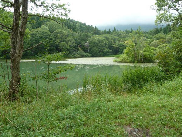 Kuroyuri1